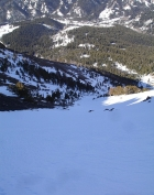 This is the view down from the top of the gully.