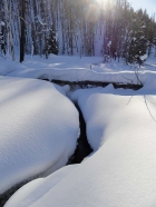 Winter scene on Fisher Creek.